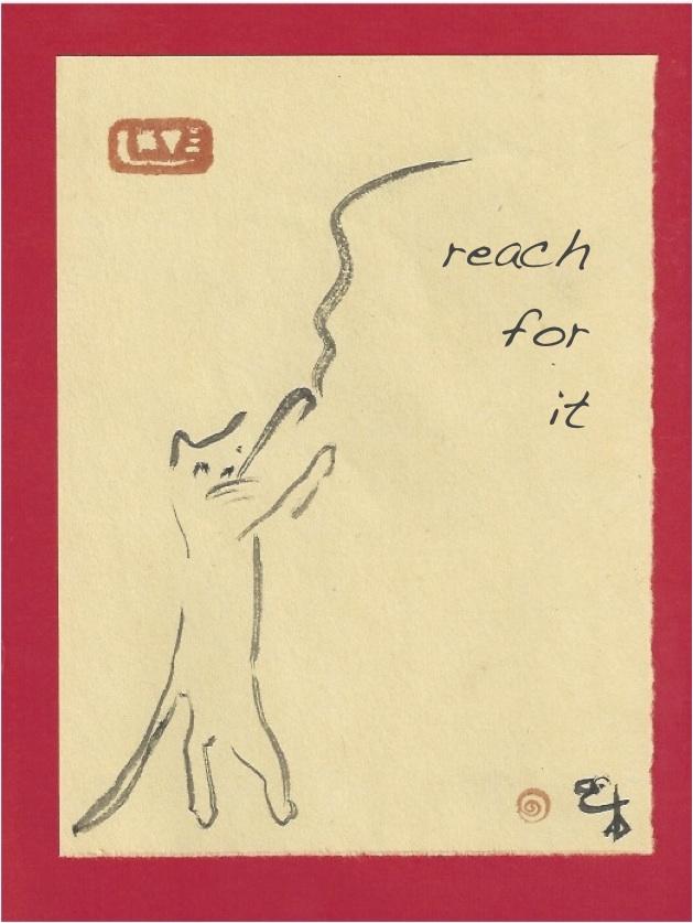 taocat reach for it