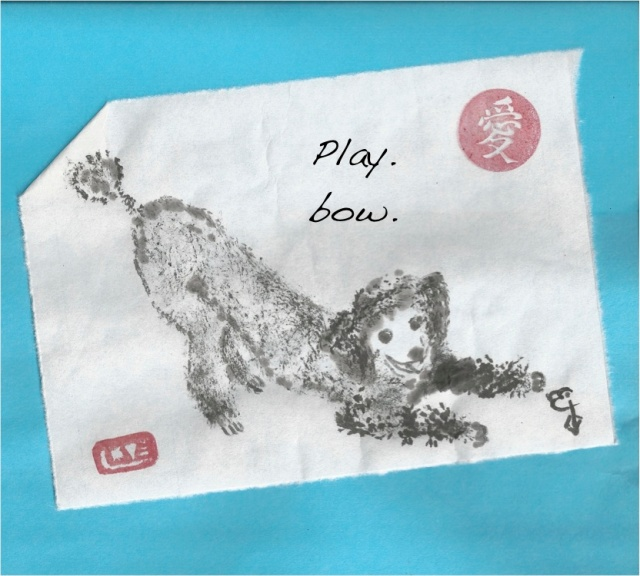 poodle play bow