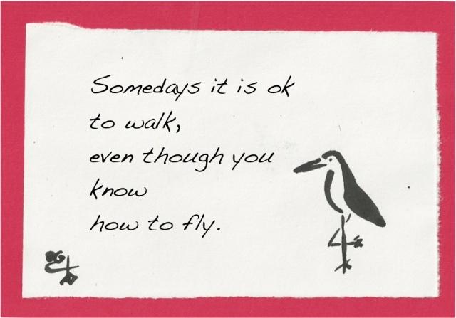 walk not fly crane