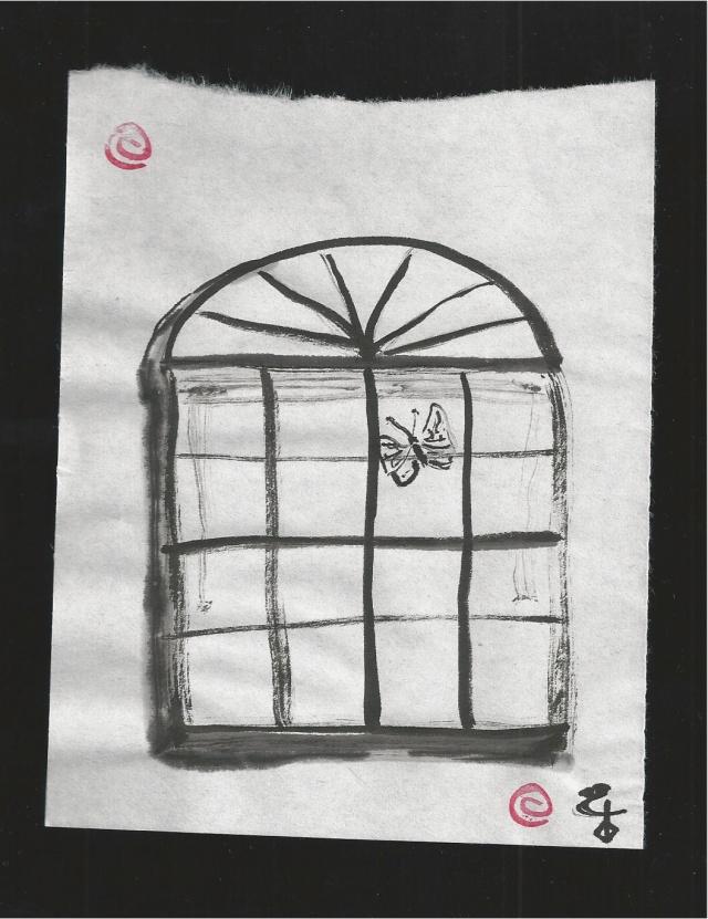 butterfly outside of the window