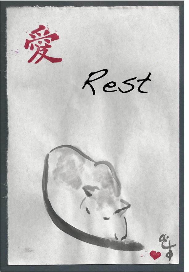 rest cat