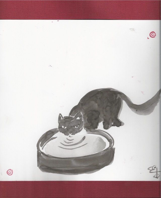 soft cat drinking from bowl