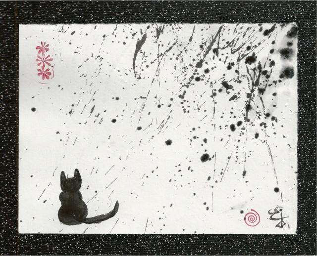 tao cat watches the storm narrow border