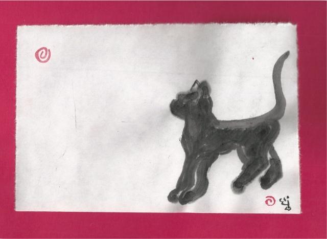 teen cat