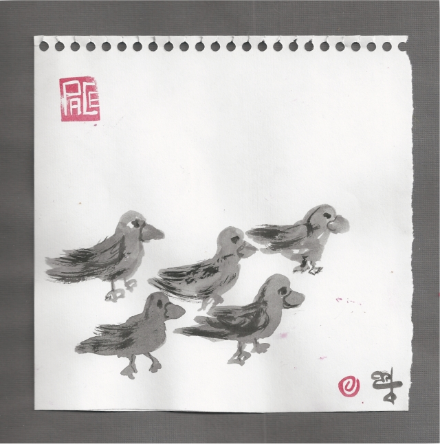 ducks walking.