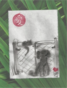 cat & poodle by gate