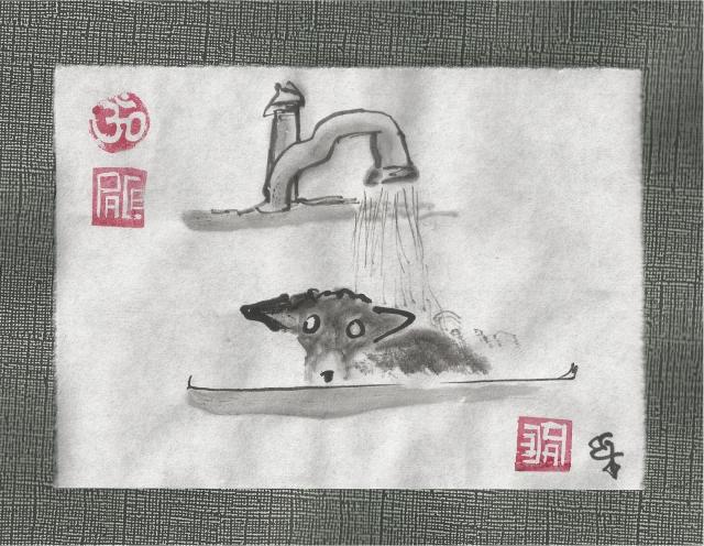 oreo in sink bath
