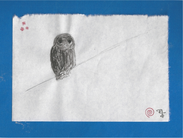 owl under the stars