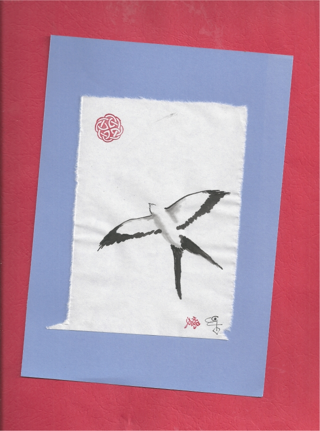 kite soaring