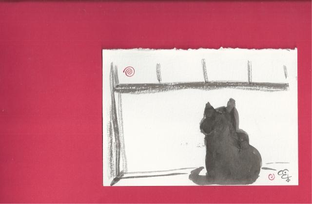 presto in the window