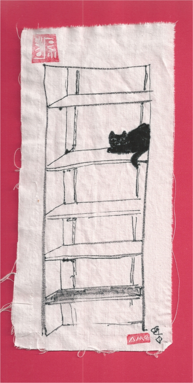 black cat in closet shelves