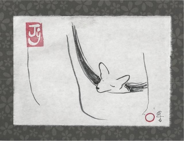 chihuahua in bag sleeping