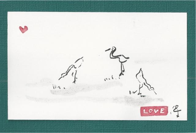 three cranes grazing