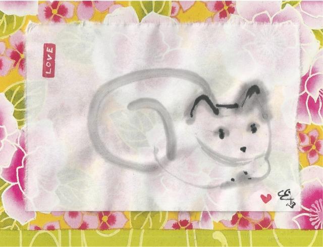 tula white cat