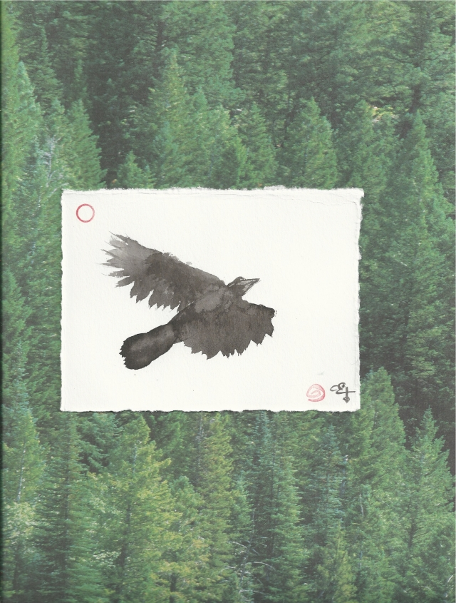 crow above cedars