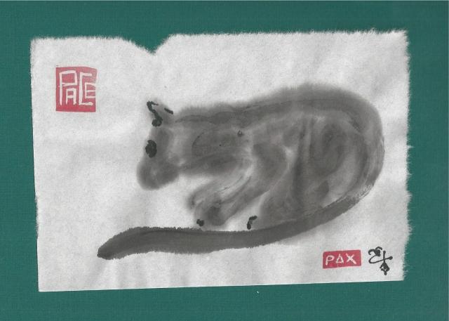 feral black cat