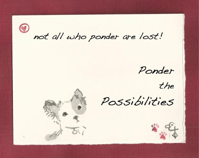 Ponder the Possibilities Pim