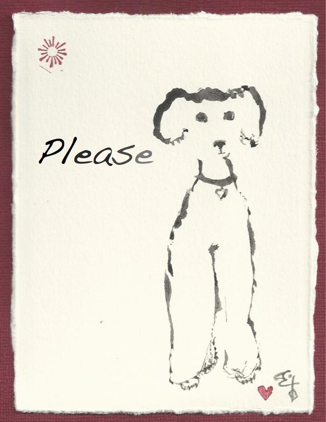 Poodle Please