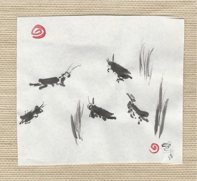 little grasshoppers-1
