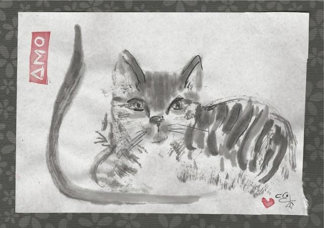 skipper the tabby cat