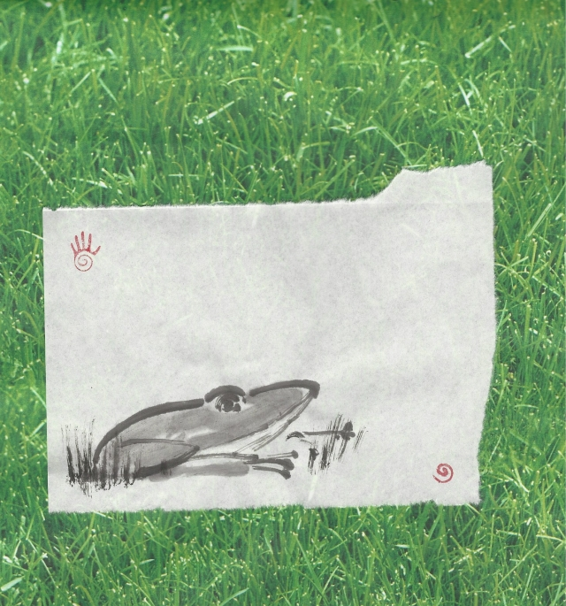 big green frog in grass