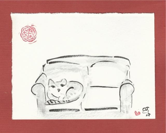 stranger cat on sofa