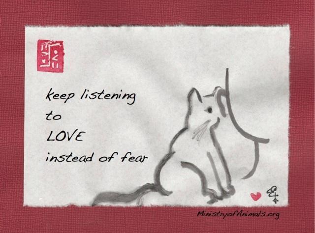 listen to love kitten on shoulder copy