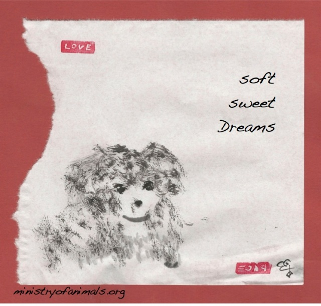 soft sweet dreams