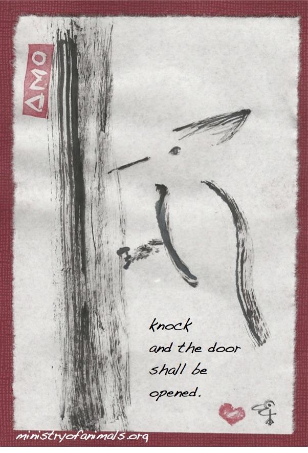 woodpecker knocks on the door
