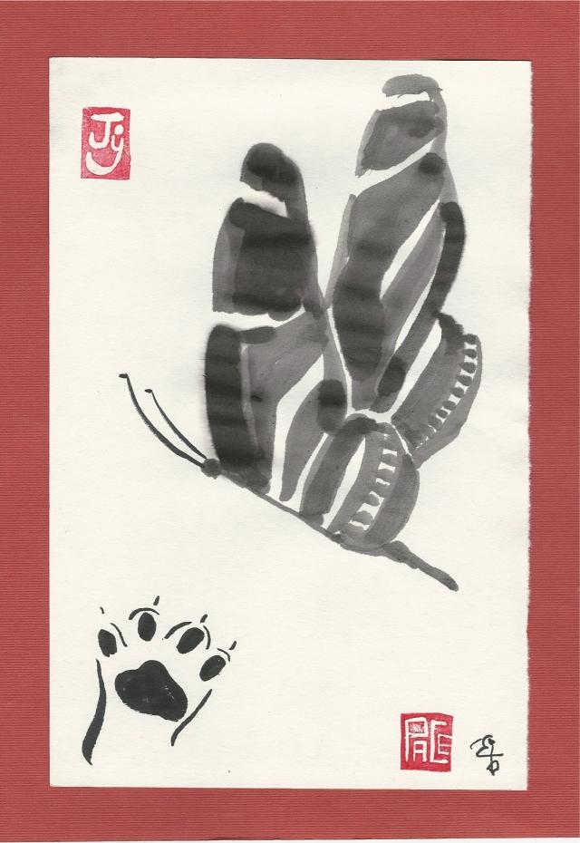 litten paw zebra butterfly
