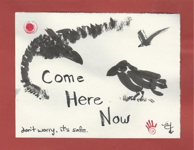 not quite murder crows