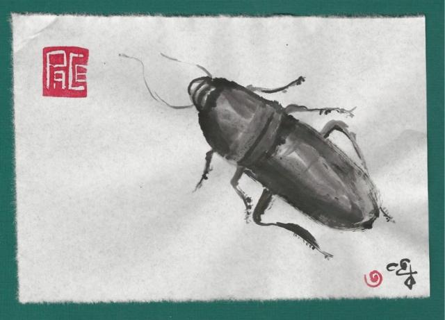 palmetto woods bug