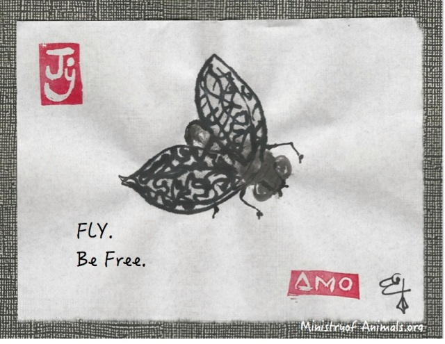 fly-be-free