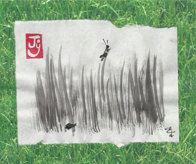 grasshopper-in-grass
