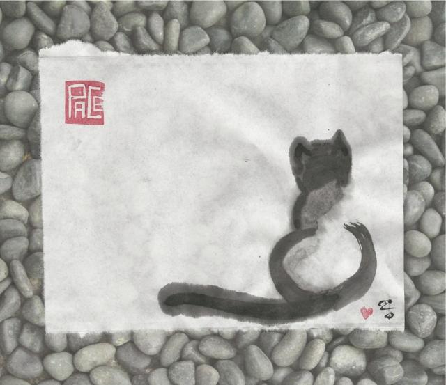 cat-on-the-rocks