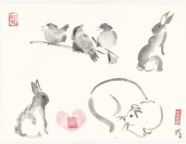 practice-bunnies-and-birds-and-a-cat