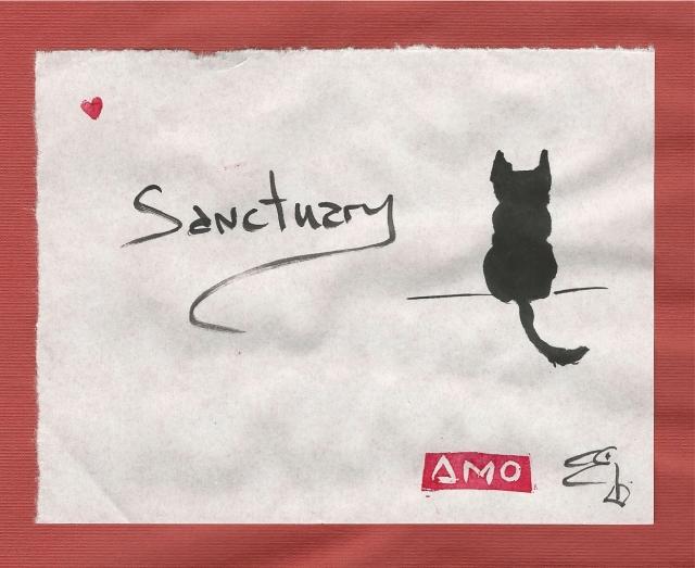 sanctuary-cat